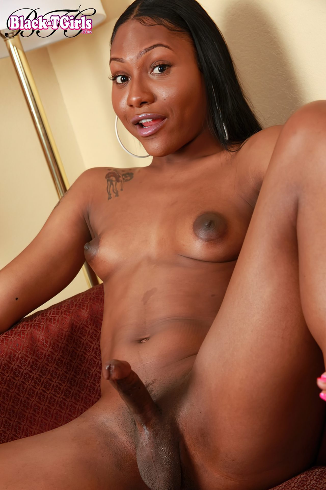 Ashley Travesti (4)