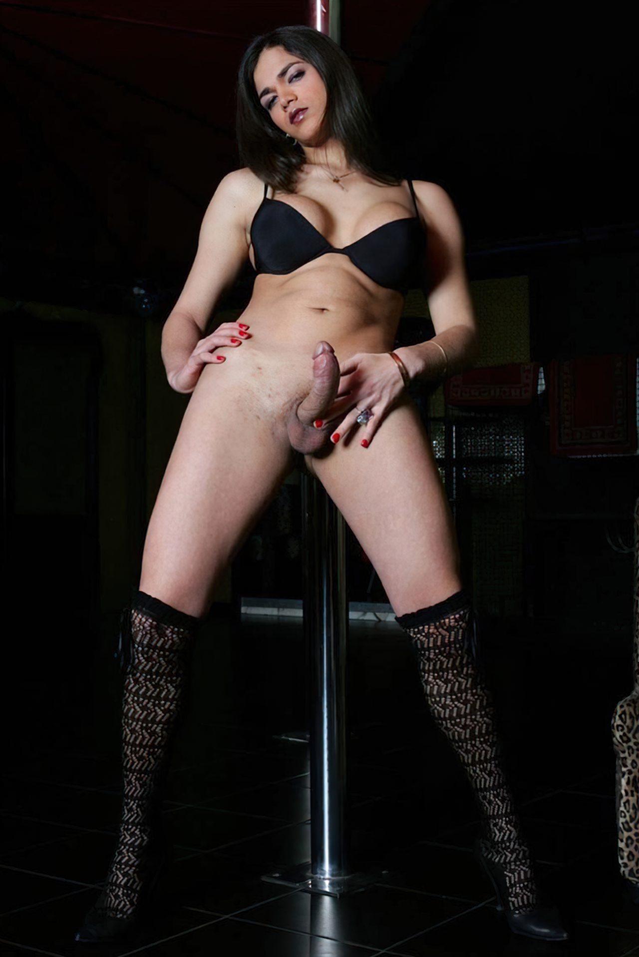 Travesti Pau Duro (9)