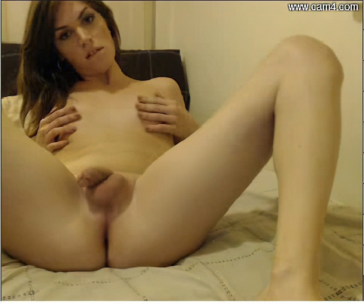 Tranny Webcam (1)