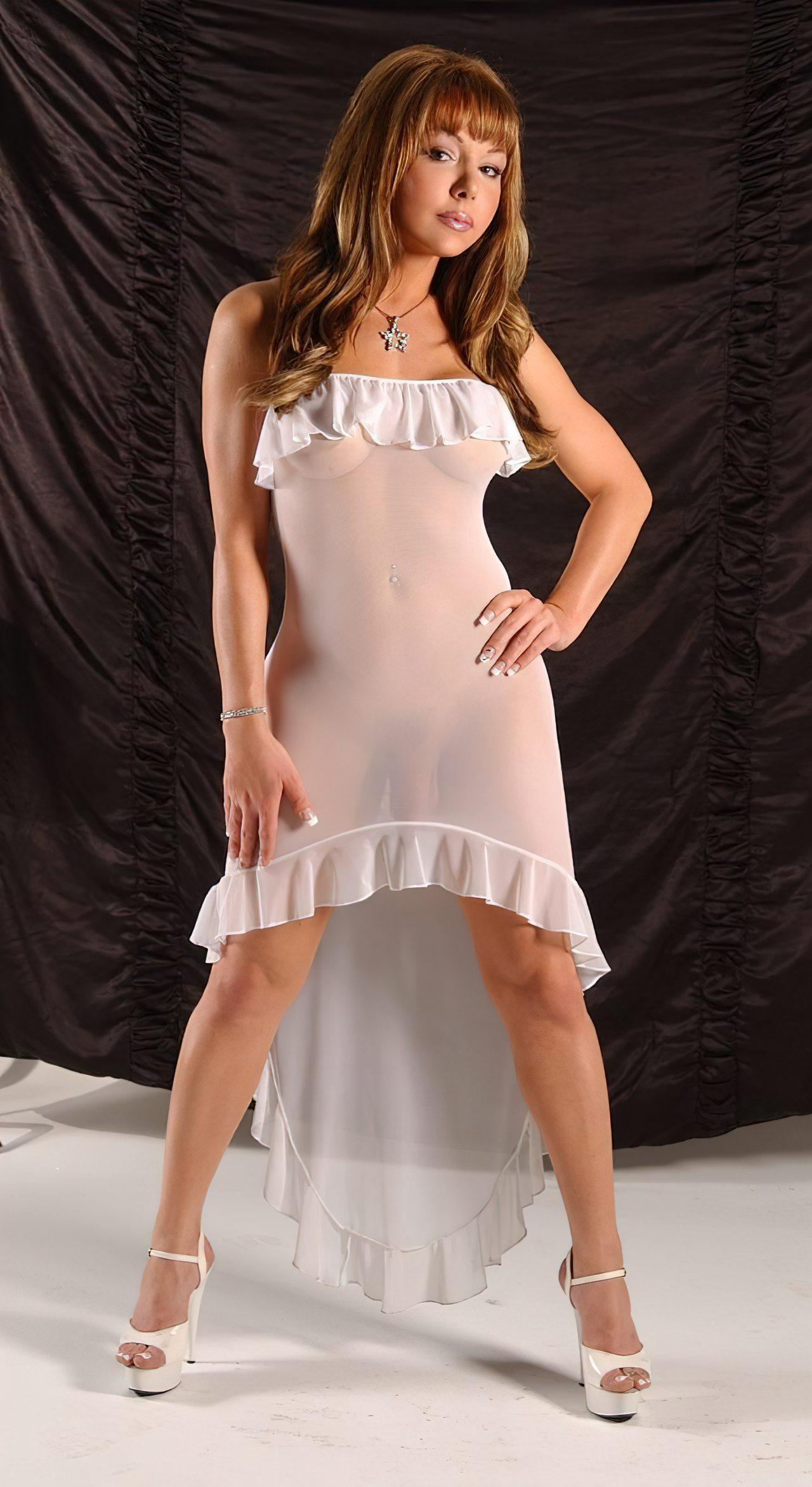 Travesti com Vestido Transparente