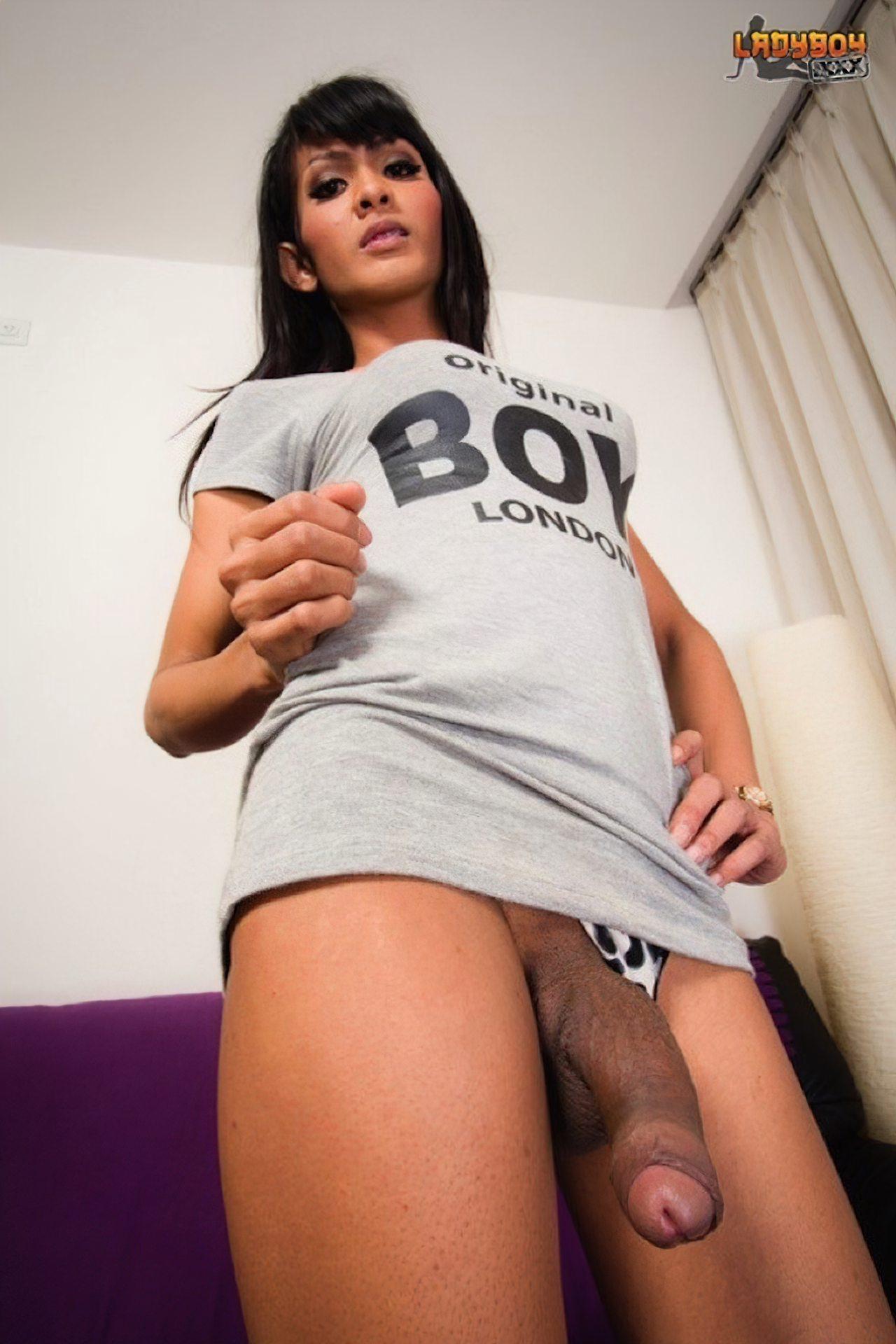 TGatas (30)