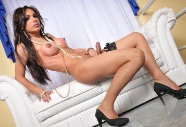 Transex Sexy e Safada (2)