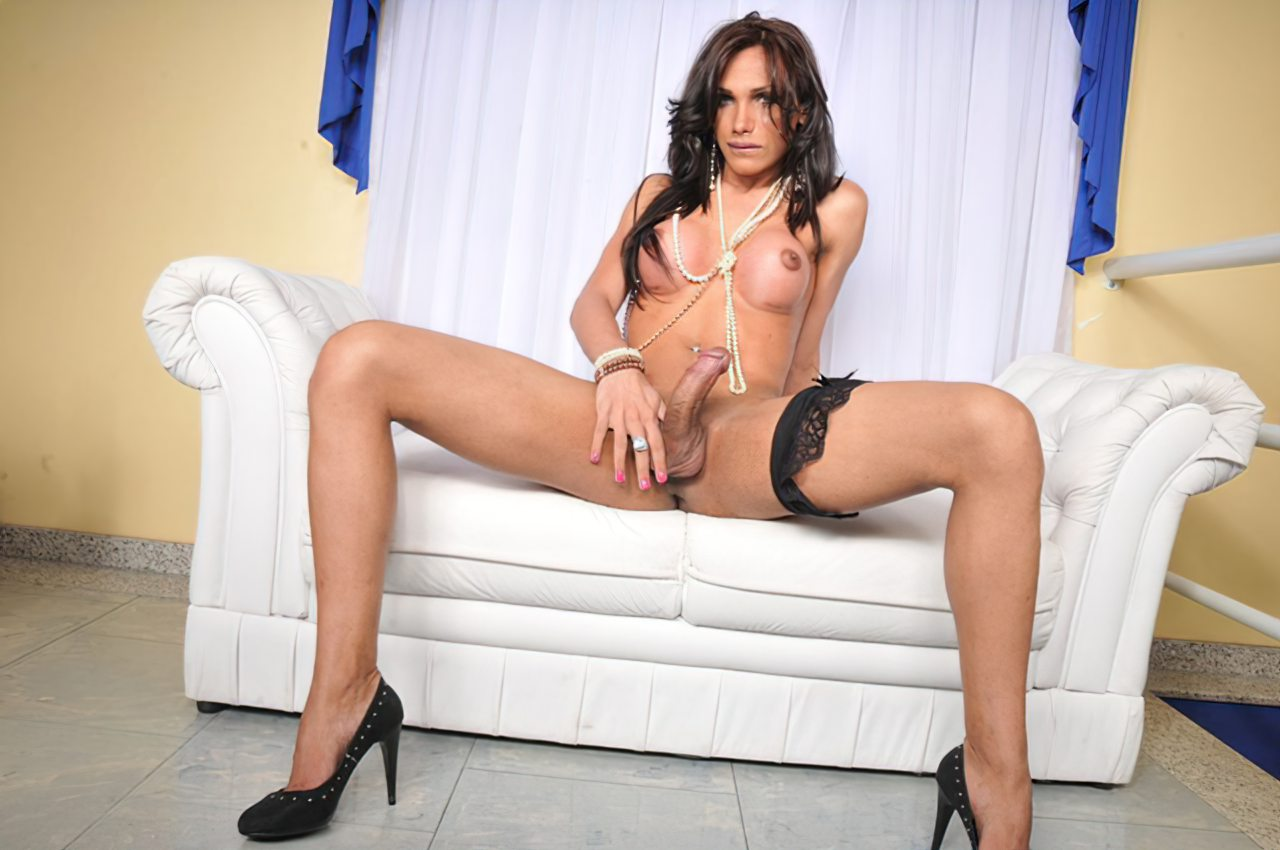 Transex Sexy e Safada (3)