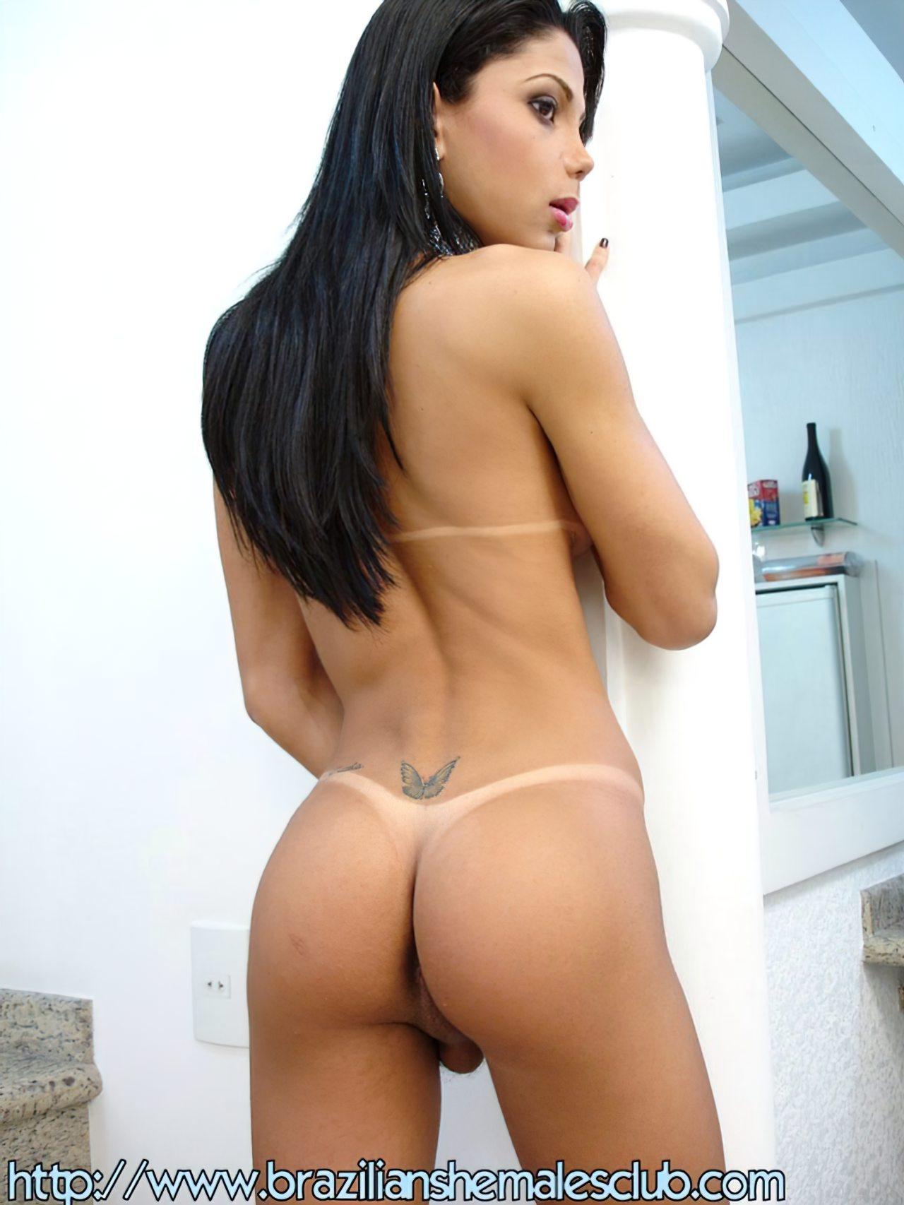 TGata Brasileira (3)