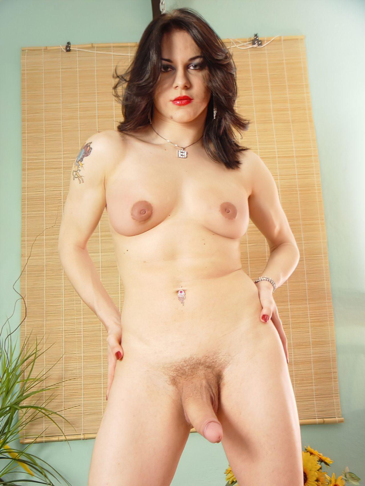 Imagens Transexuais (9)