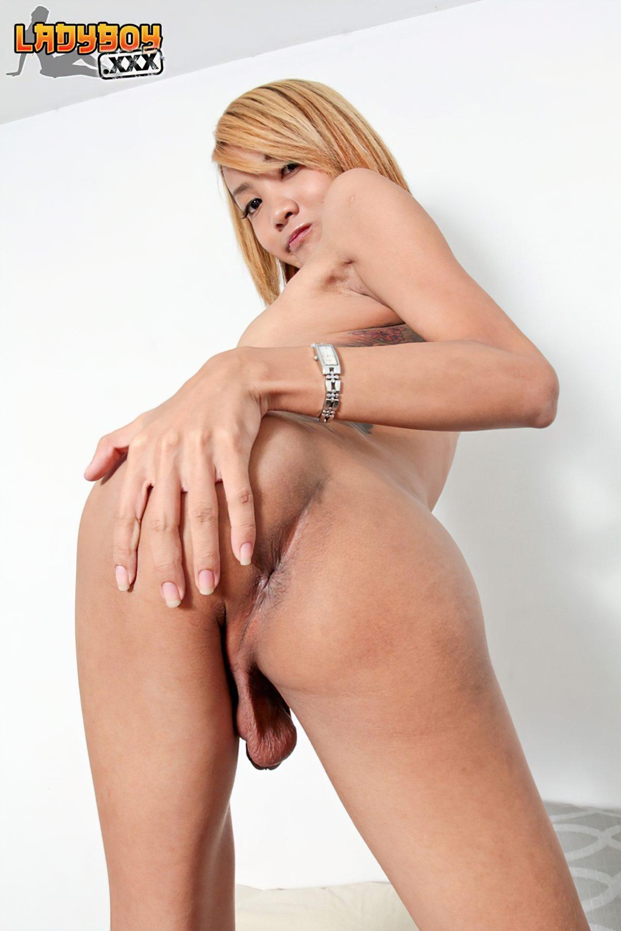 Travesti Tailandesa Novinha (14)