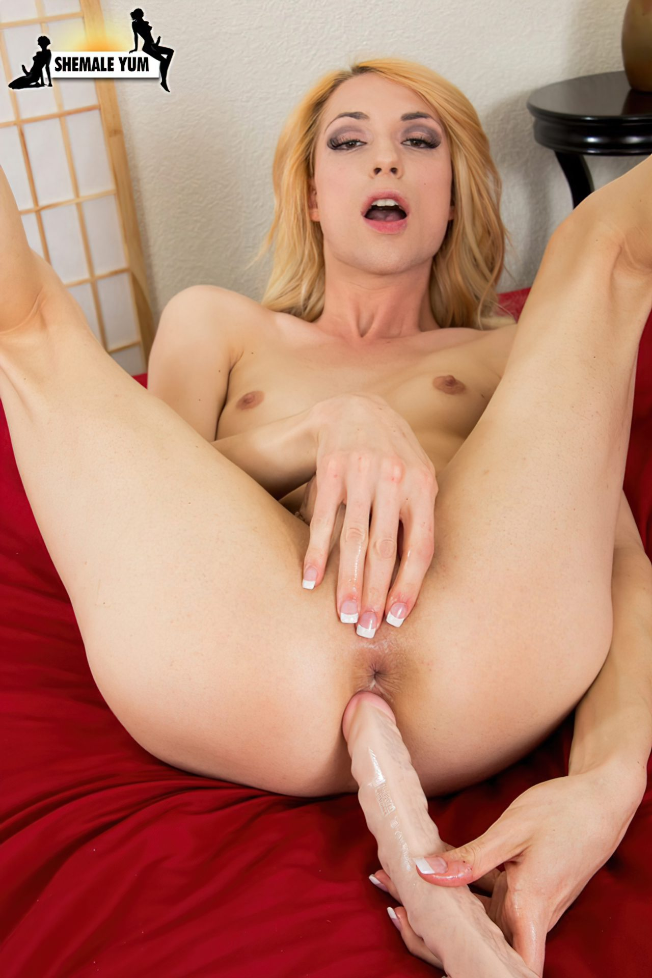 Travestis (41)