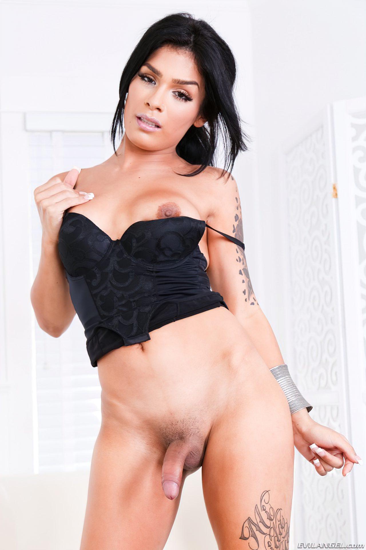 Travestis (44)