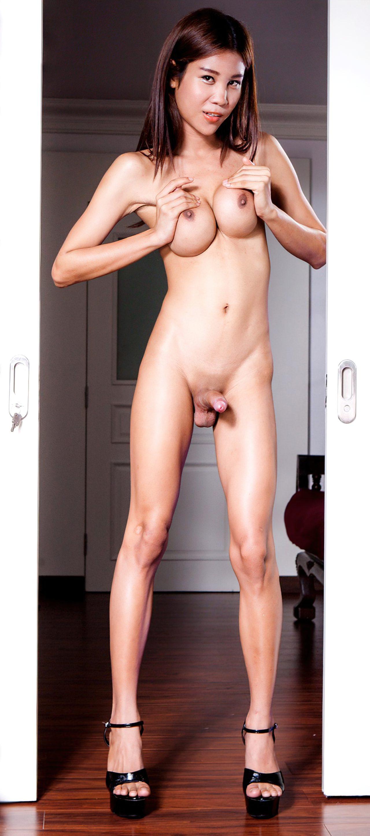 Travestis Fotos Nuas (5)