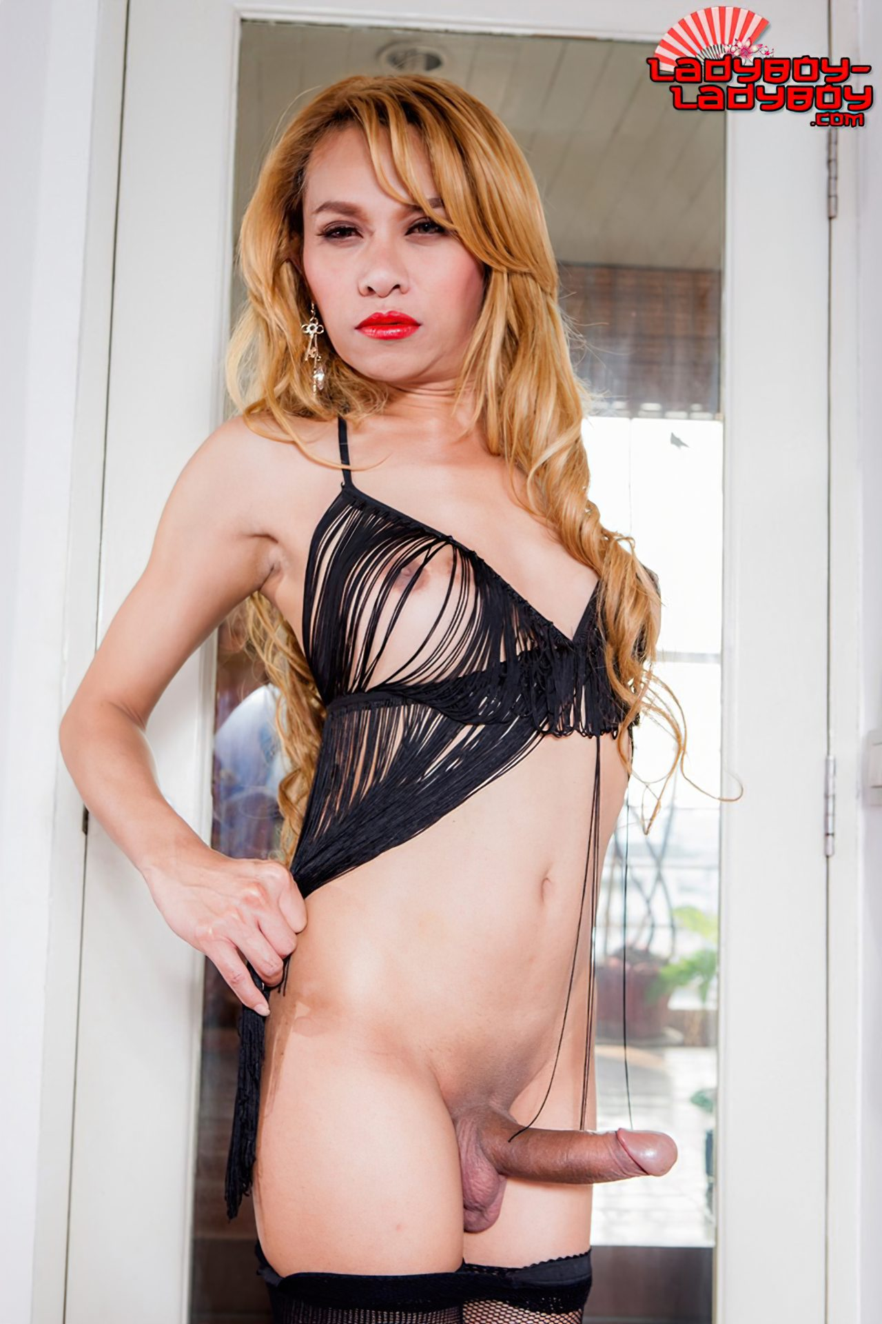 Travestis Fotos Nuas (31)