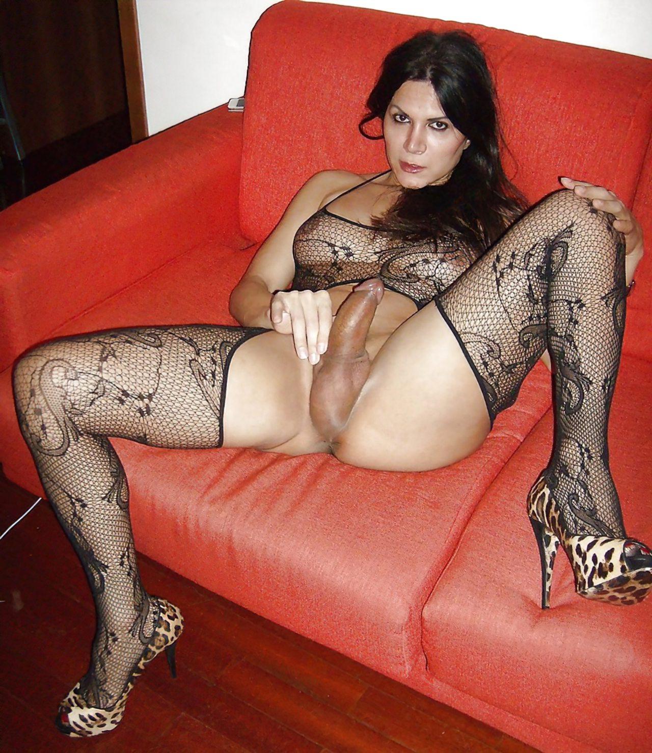 TGatas Nuas (29)