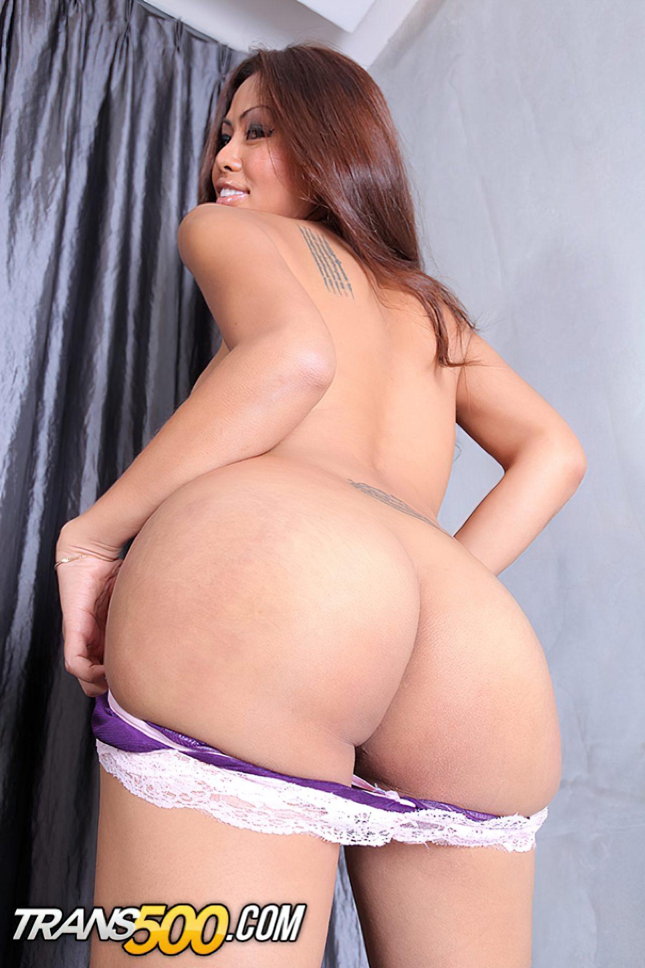 Transexuais Lindas (37)