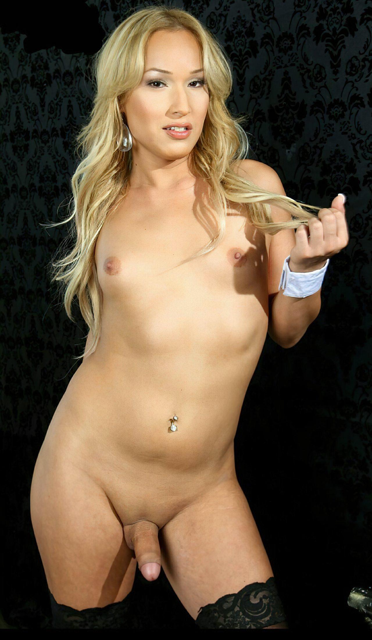 Travestis Nuas Fotos (34)