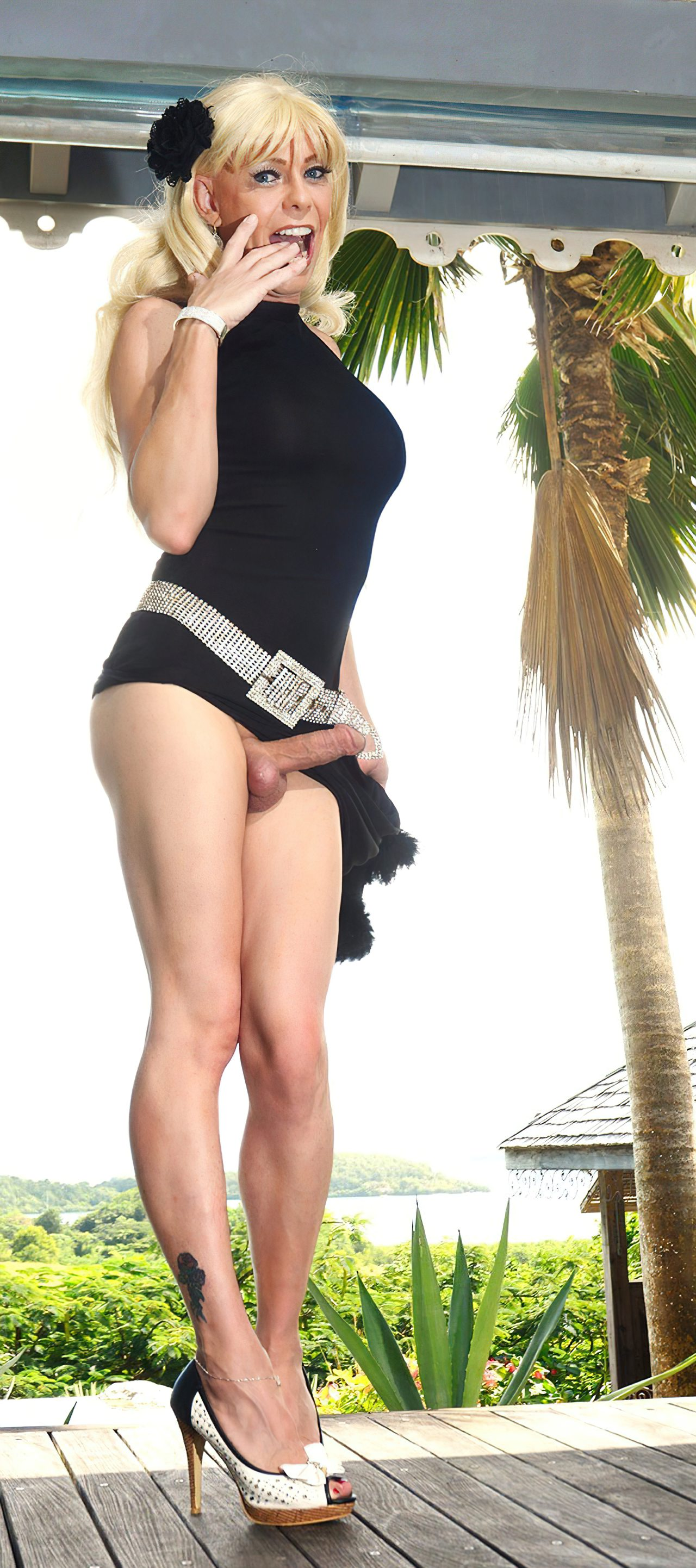 Travestis Nuas Fotos (40)