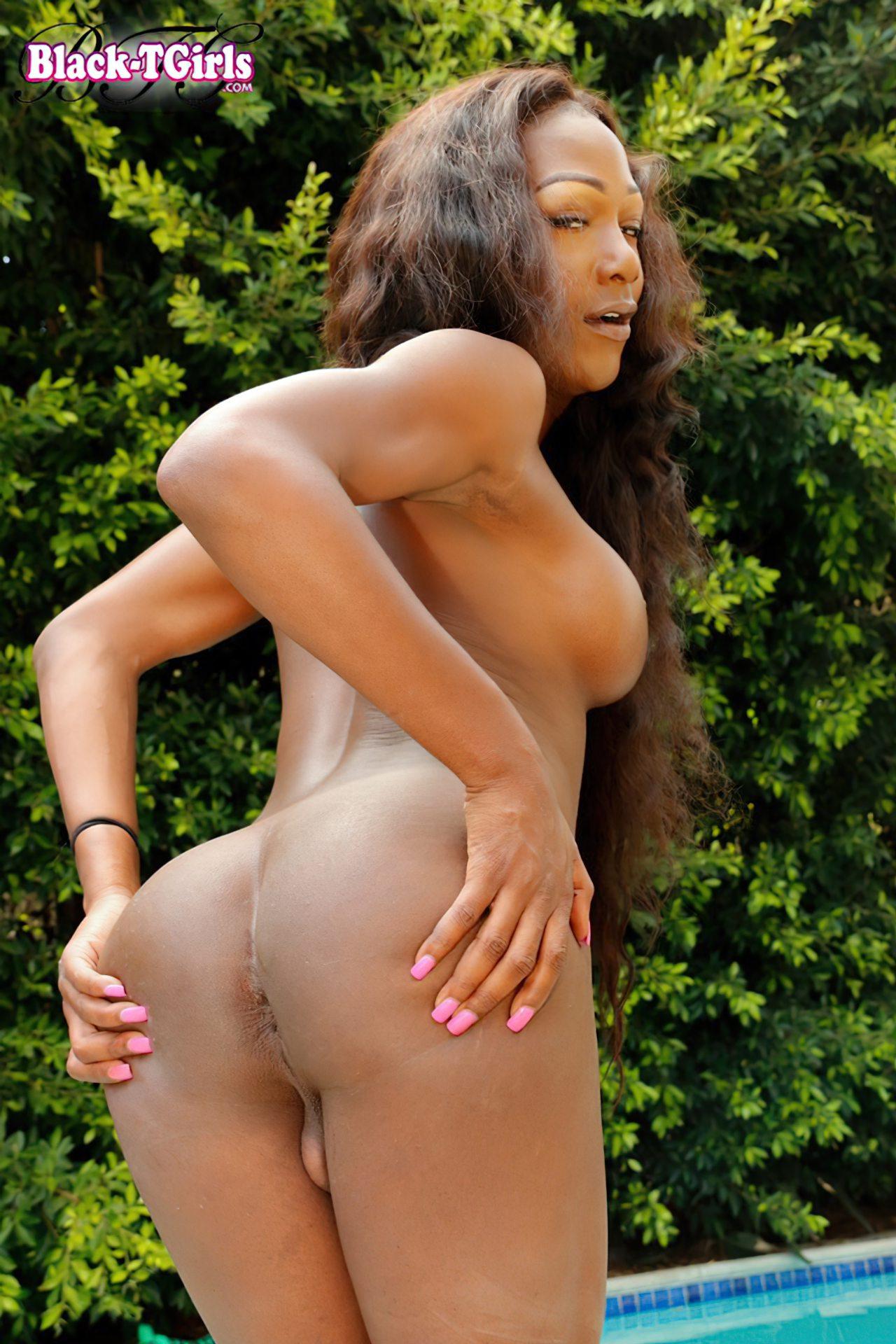Transex Negra Feminina (9)