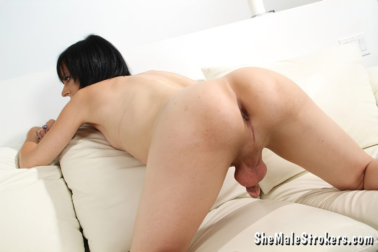 Travestis Putas (19)