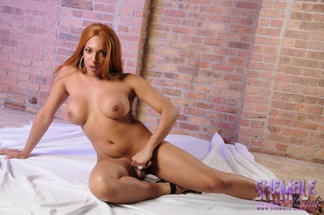 Travestis Fotos (56)