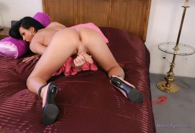 Travesti Vontade Dar (6)