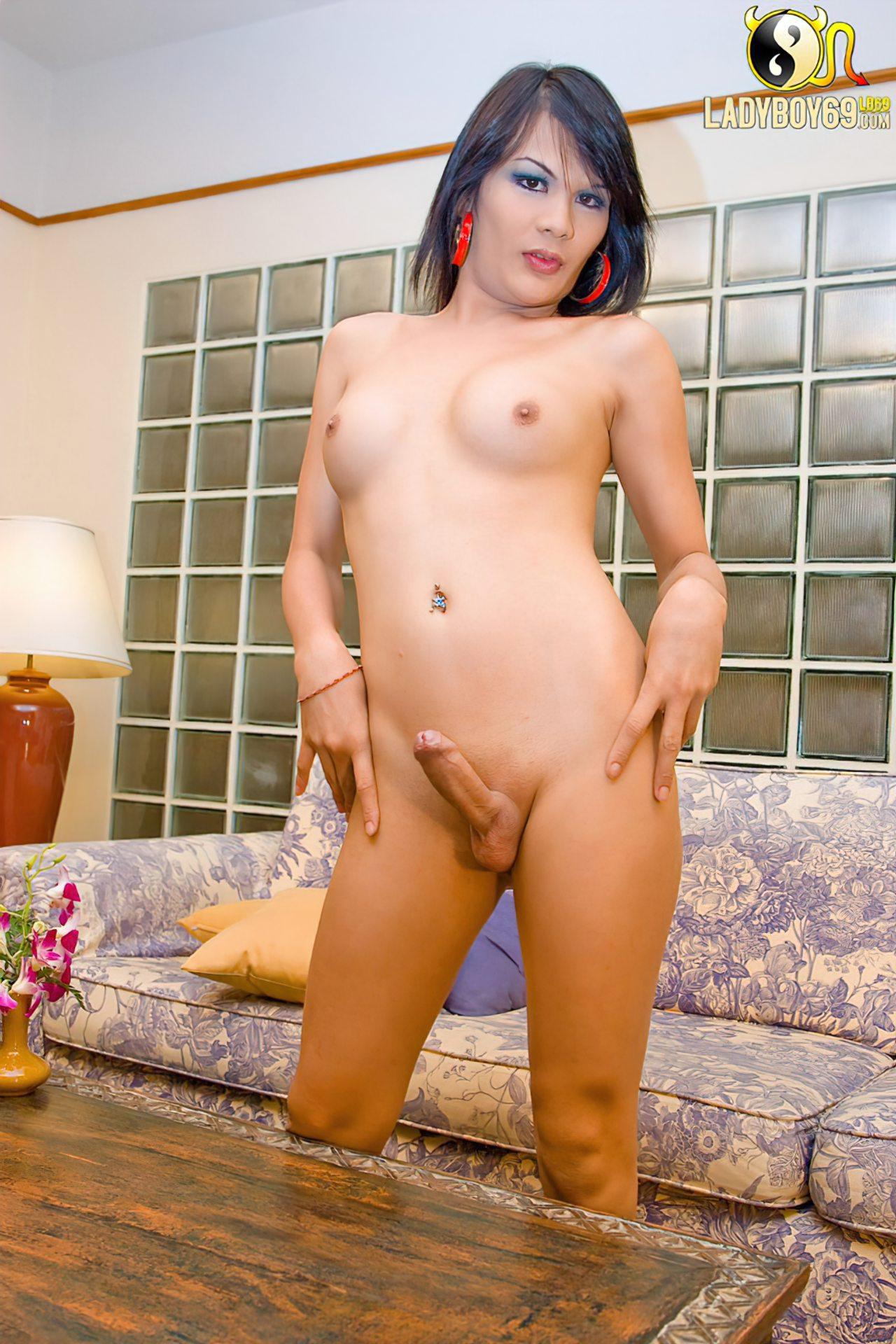 Travestis Orientais (53)