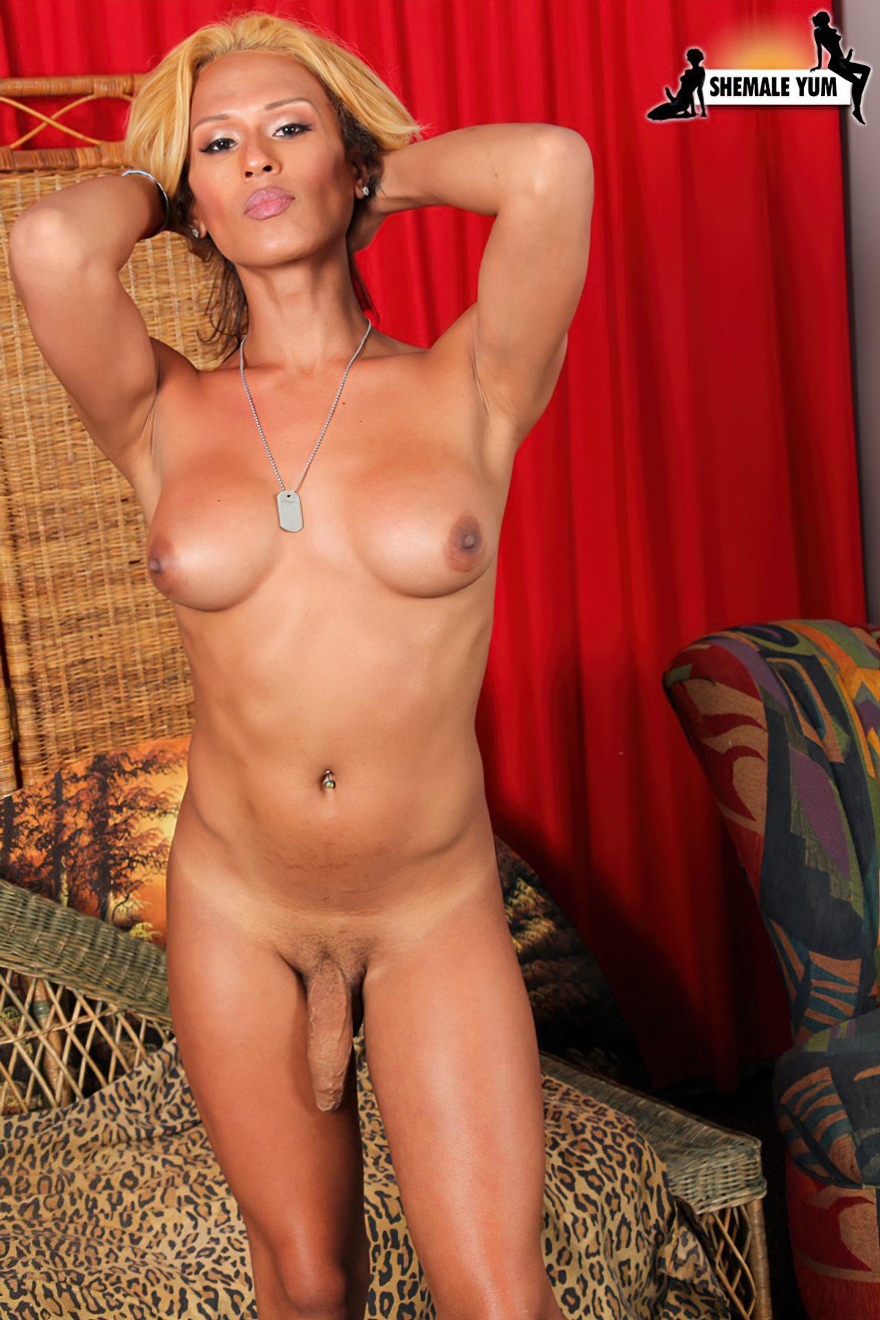 Travesti Nuas (34)