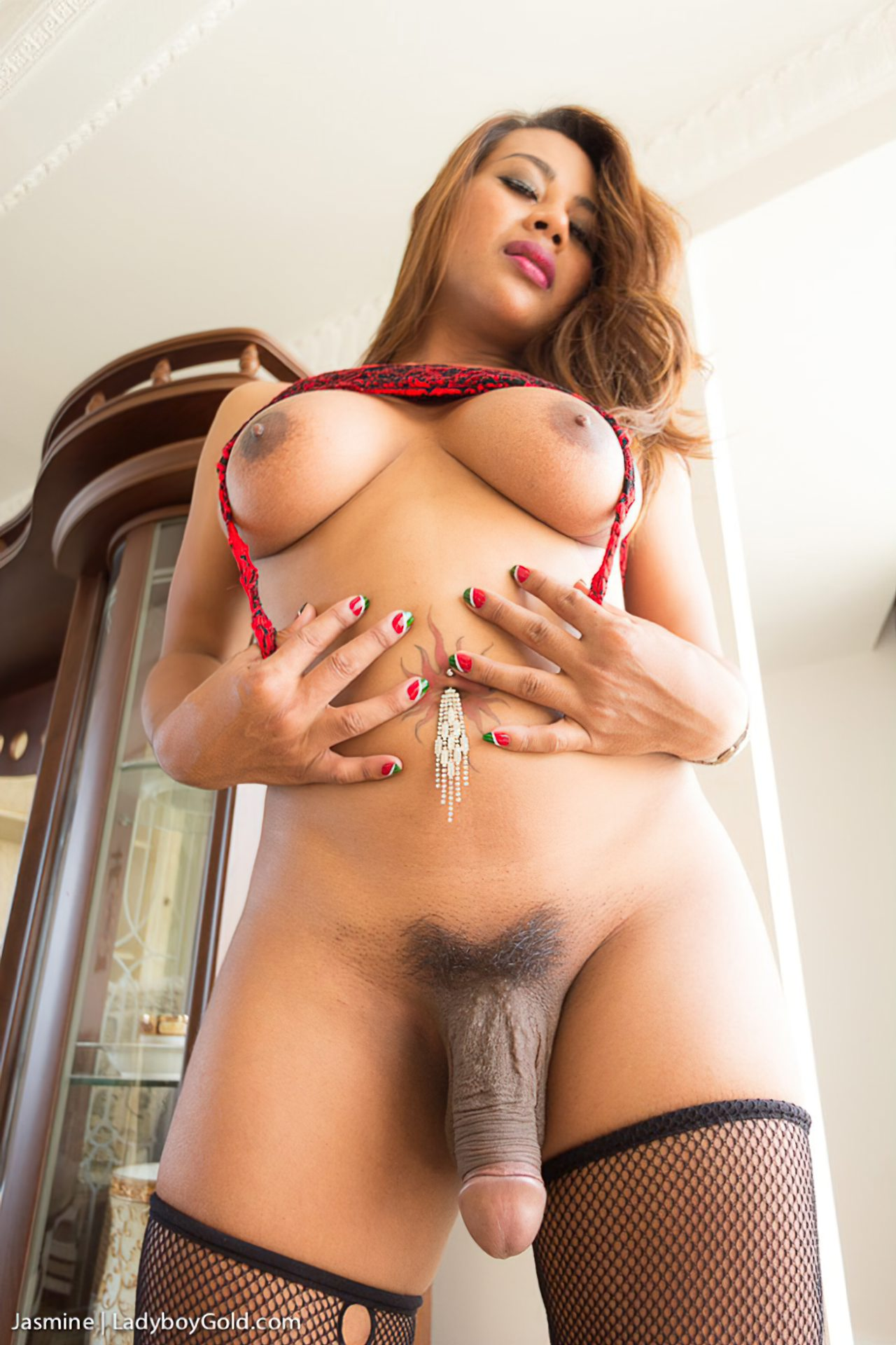 Travestis Nudes (38)