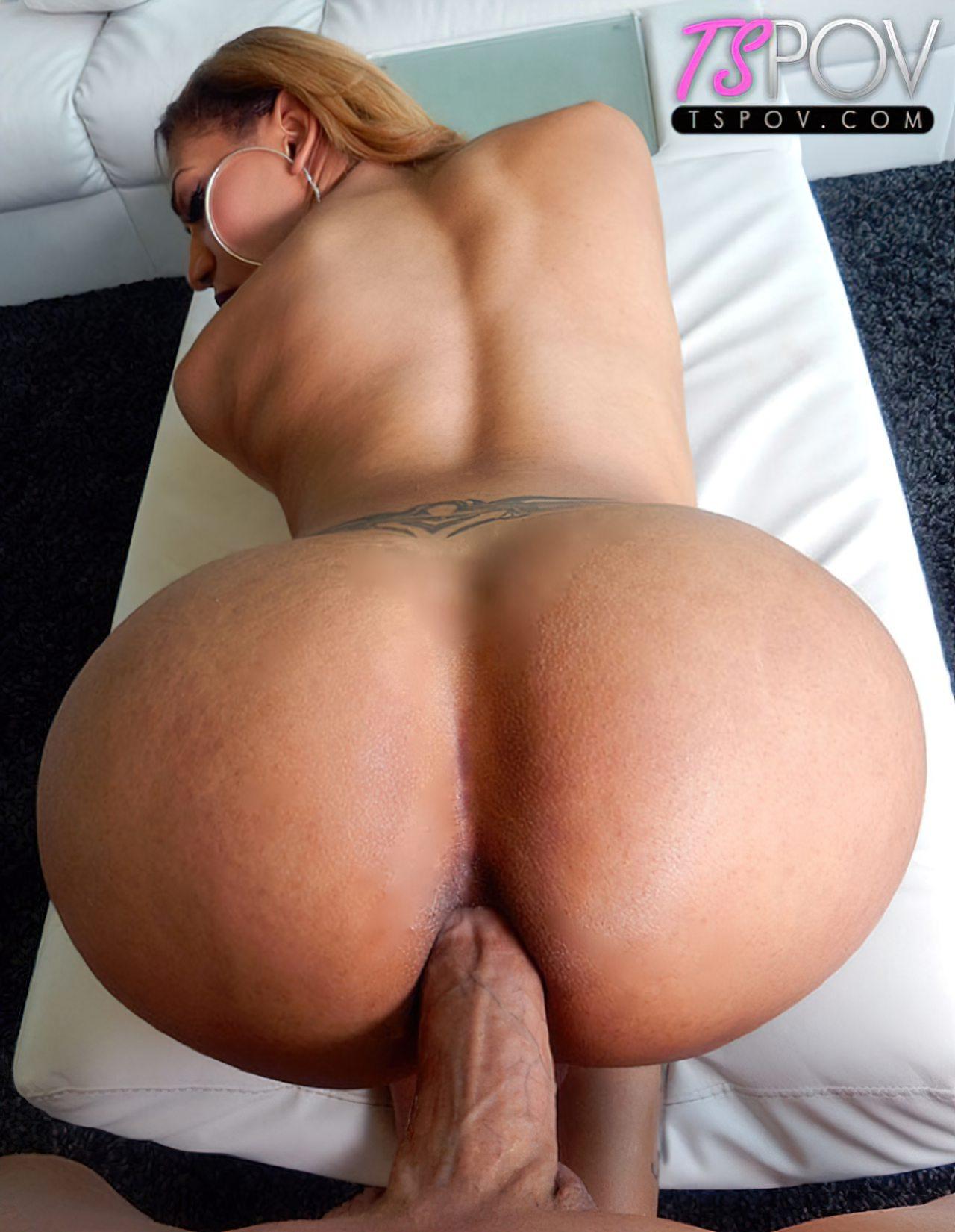 Travestis Nudes (53)