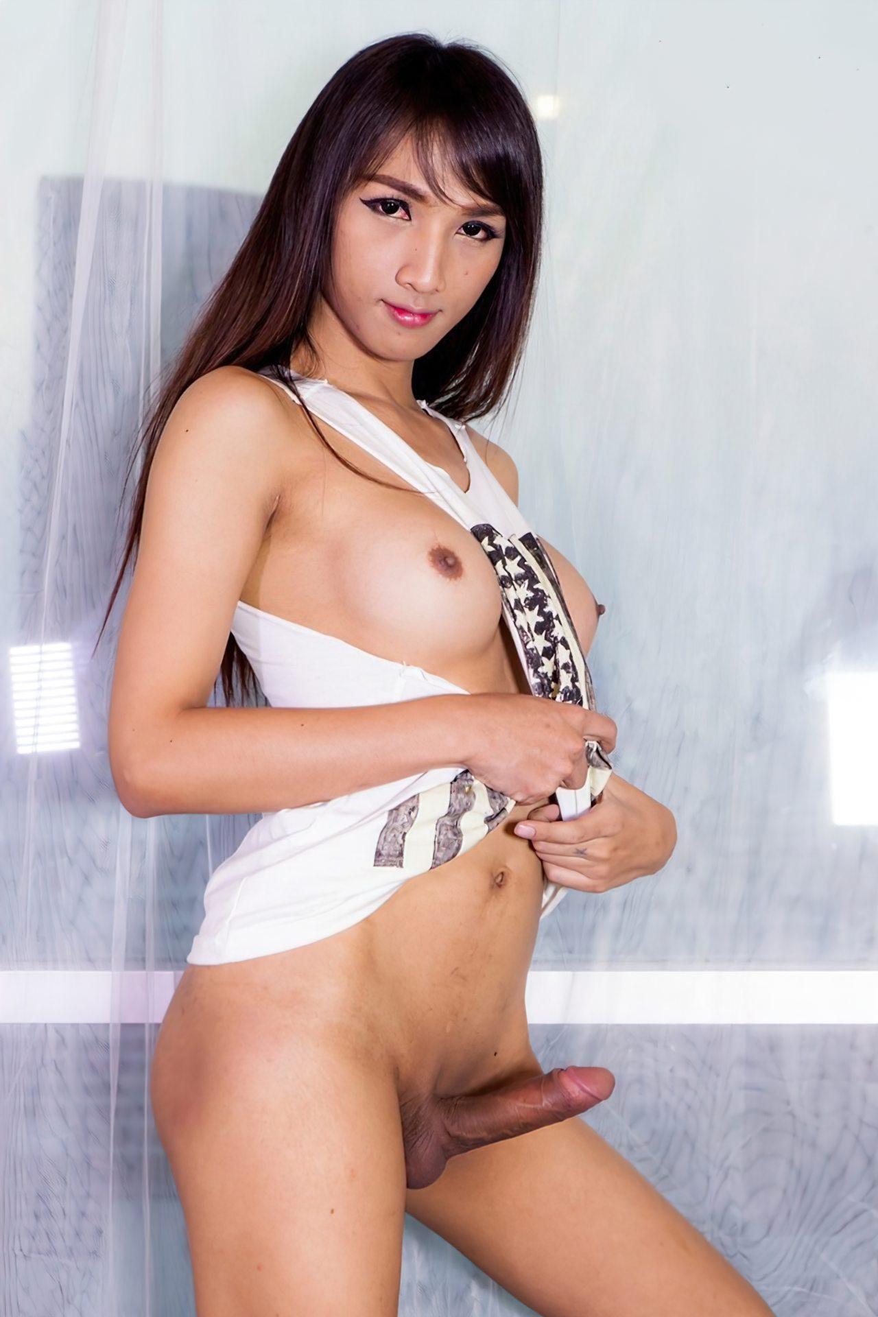 Putas Travestis (48)