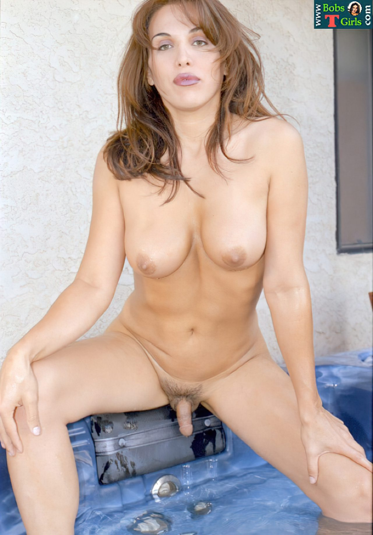 Mulheres Transexuais (44)