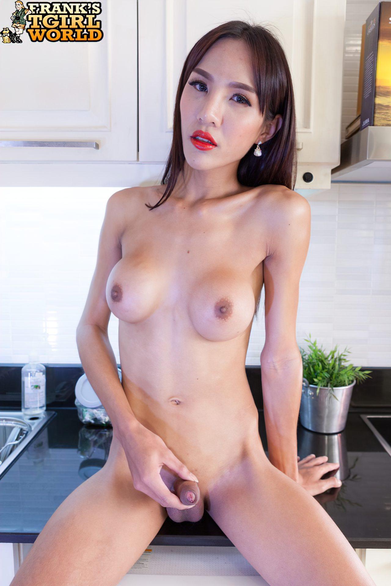 TGatas (39)