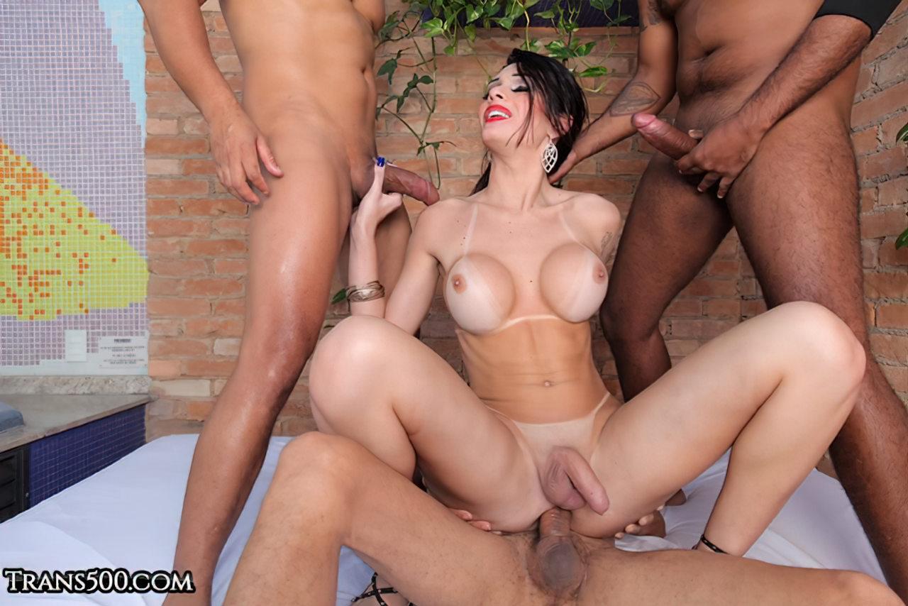 Trans Despidas (3)