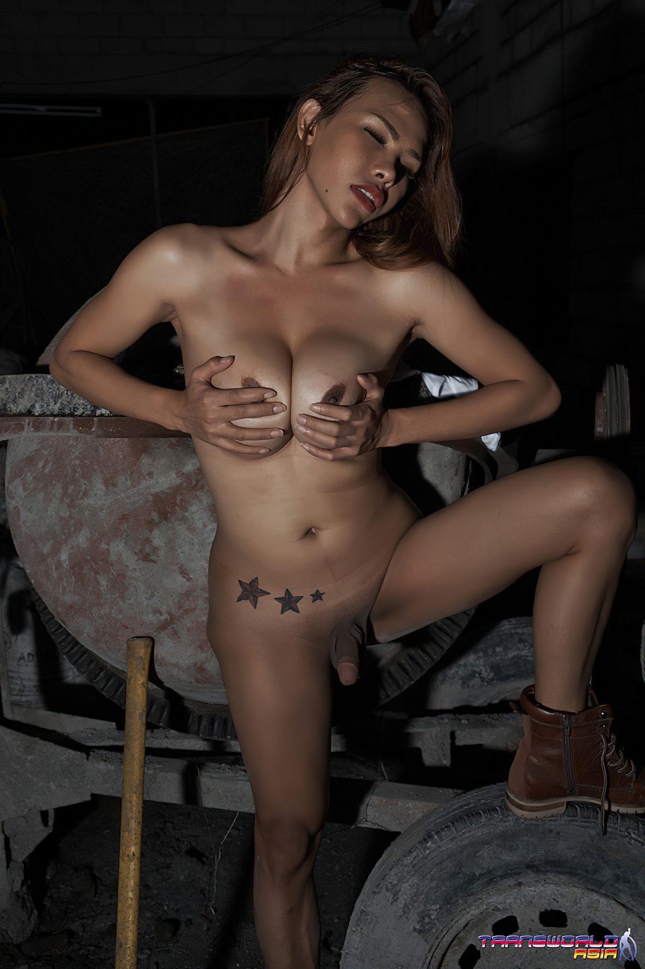 Imagens Travestis Despidas (37)