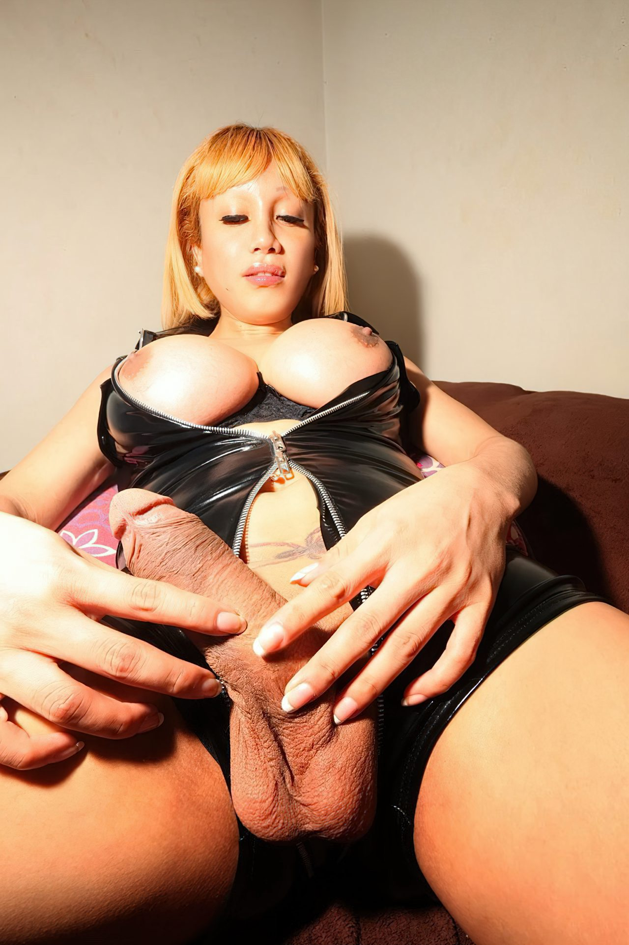 Mulher Transexual (5)