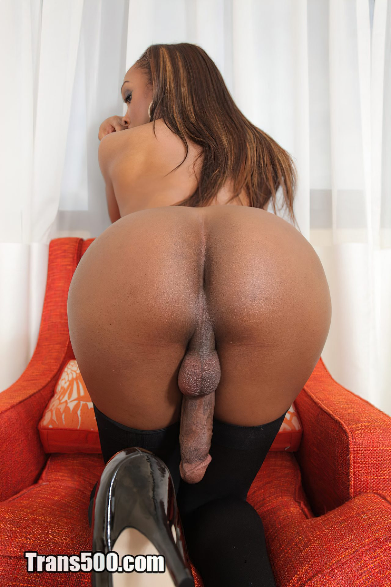 Mulher Transexual (27)