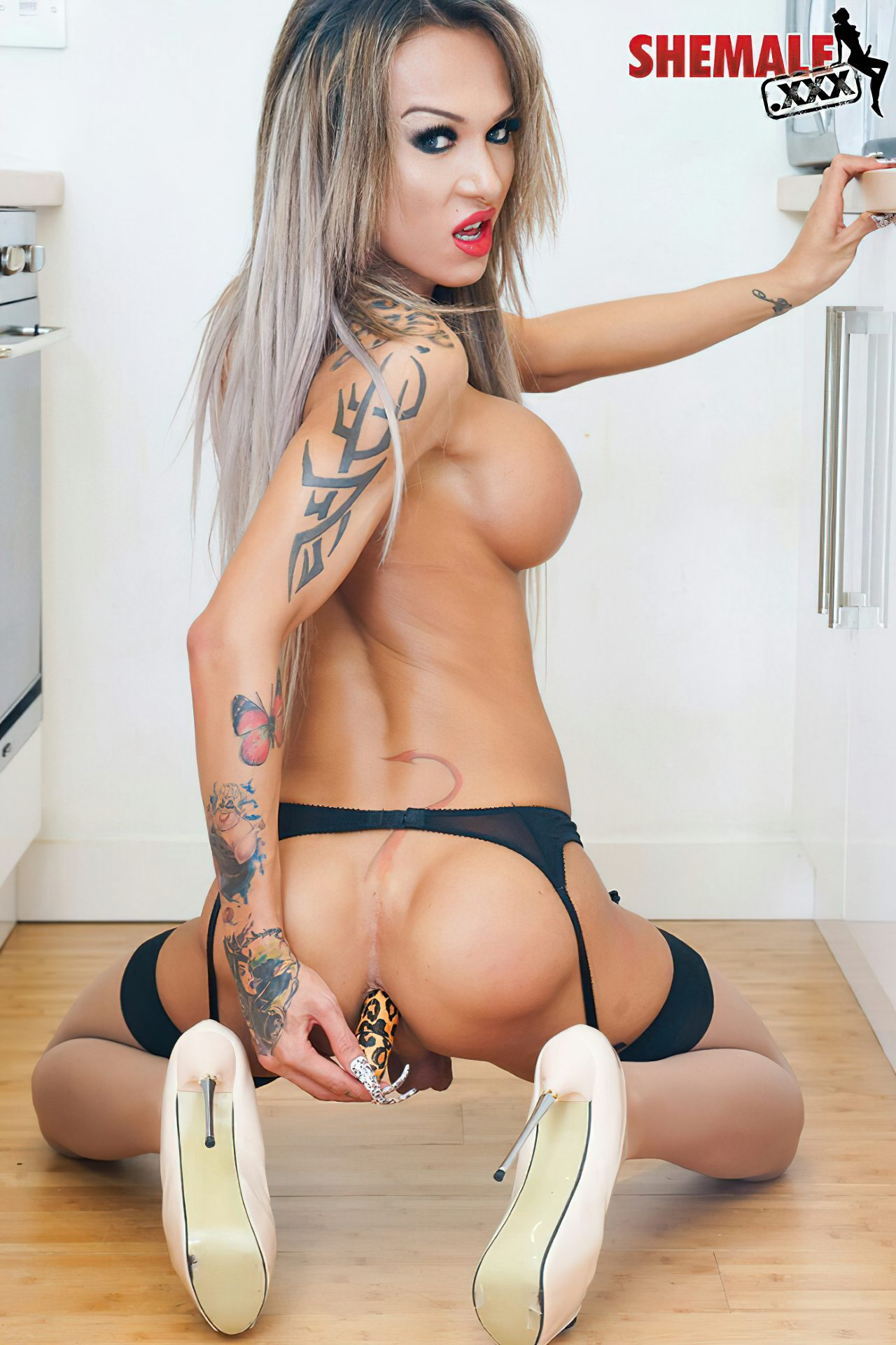 Mulher Transexual (29)