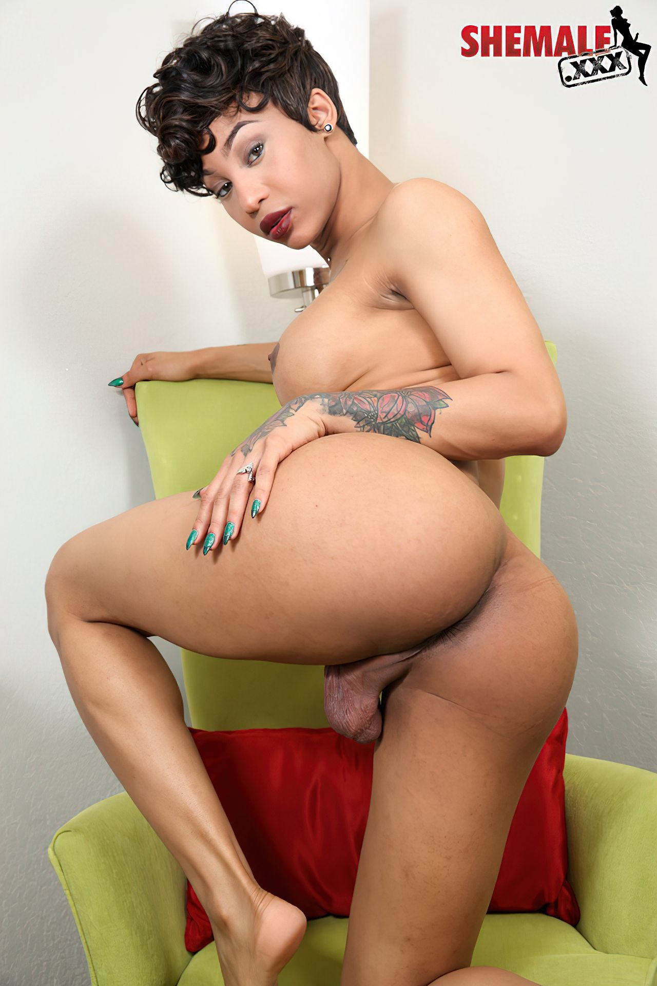 Mulher Transexual (47)
