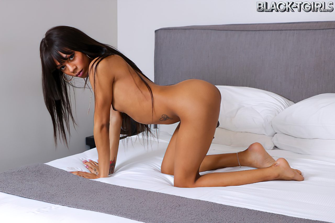 Transex Negra Elegante (5)