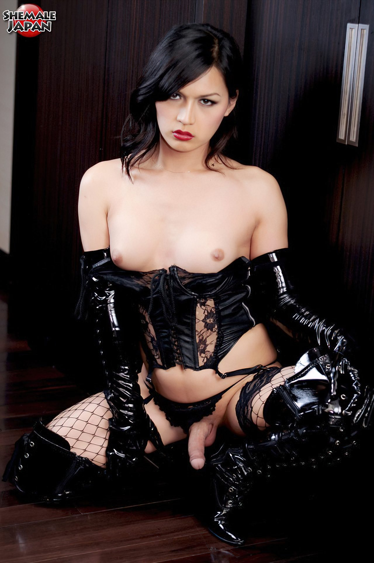 Travesti Japonesa Elegante (4)