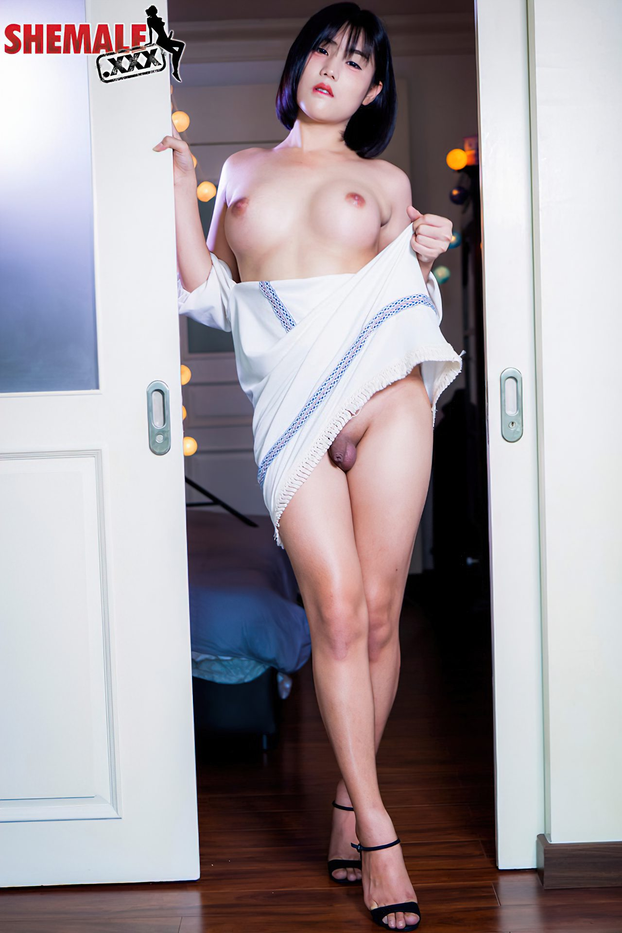 Travestis Nuas (46)