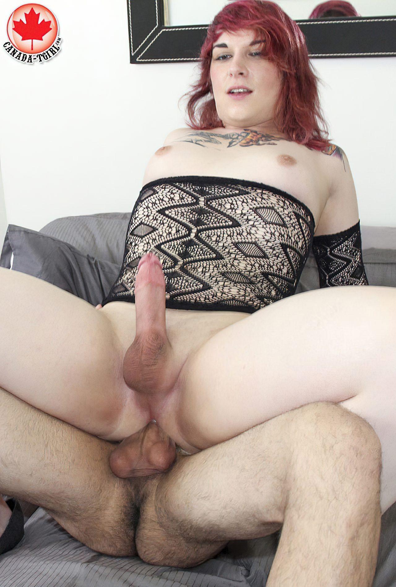 Trans Sexuais (25)