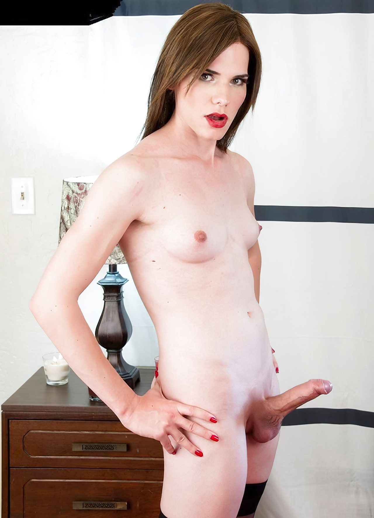Trans Sexuais (42)