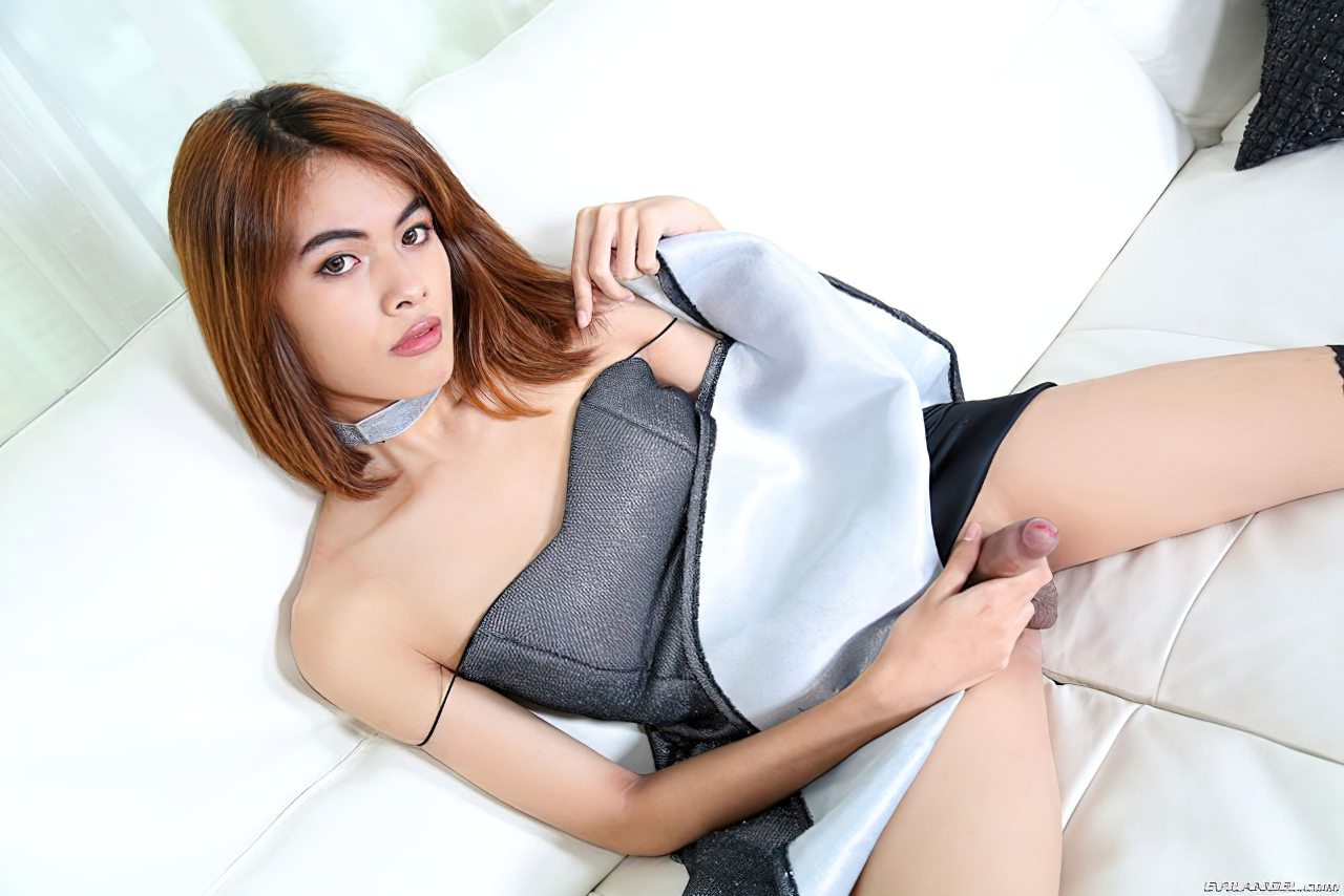 Transexuais (25)