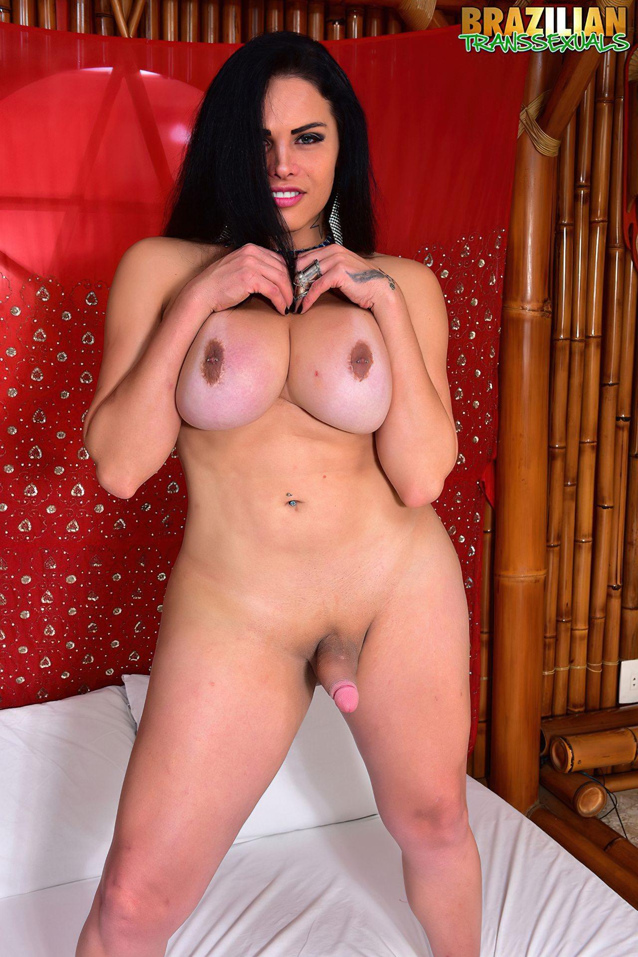 Travestis Naked (26)