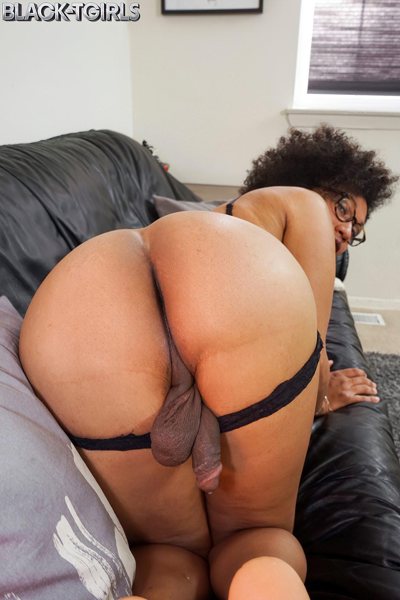 Bela Transexual Negra (3)