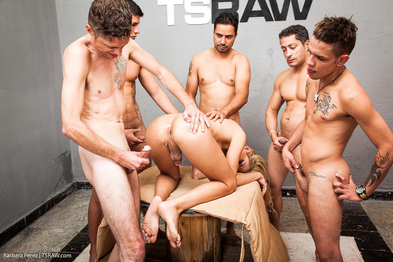 Mulheres Transexuais (12)