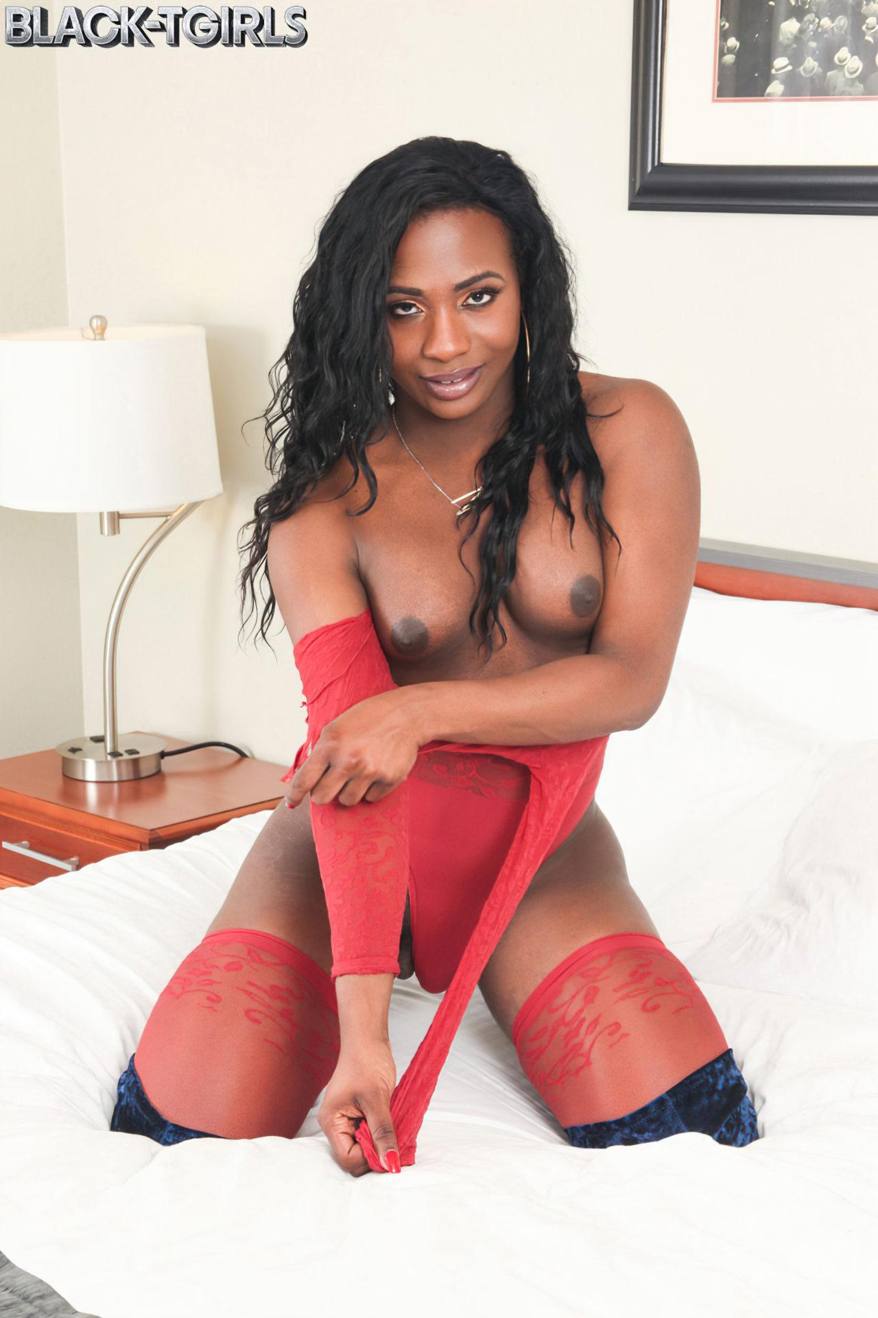 Negra Elegante Tesuda (3)