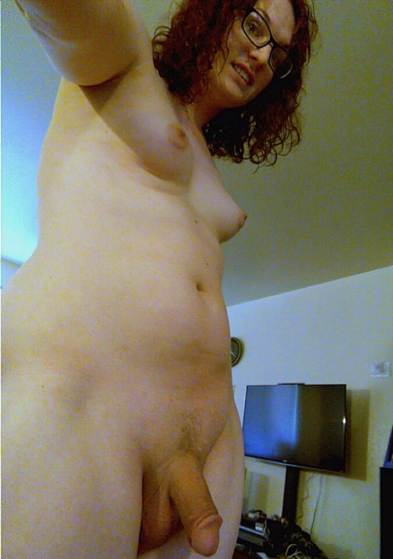 Travestis (43)