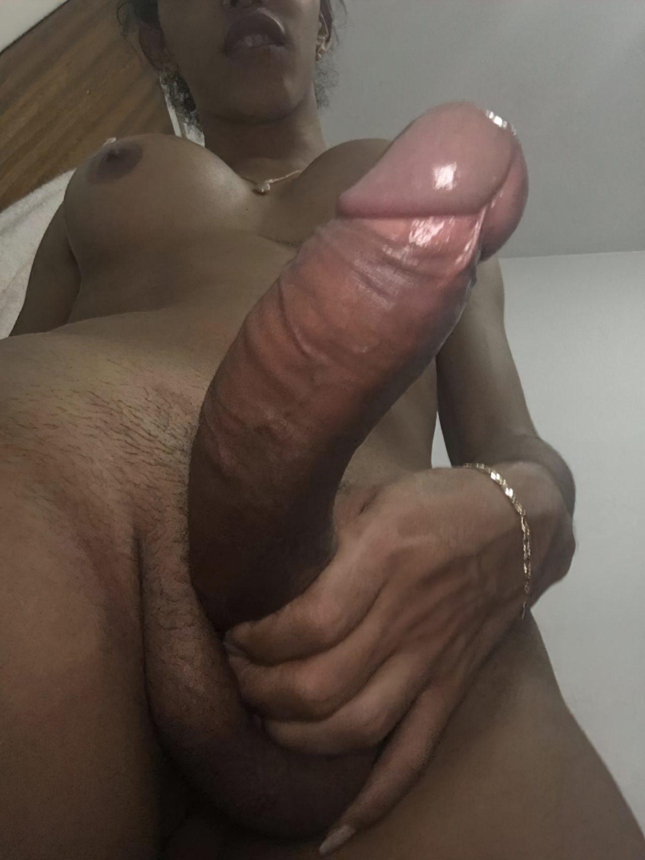 Trans Fotos (32)