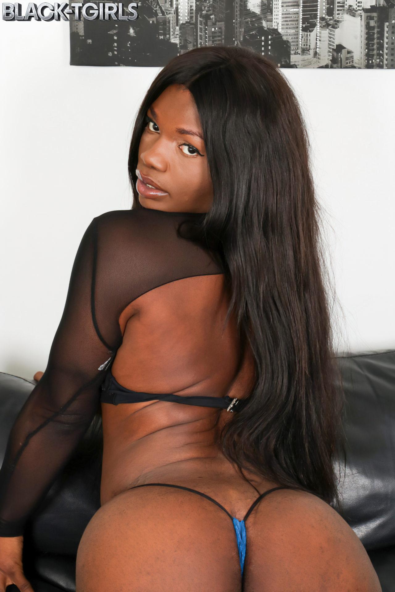 Trans Negra do Pau Curvado (1)