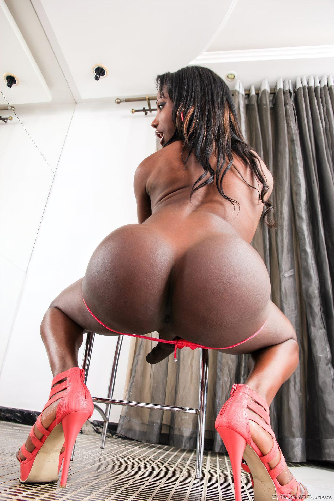 Shemale Negra (7)