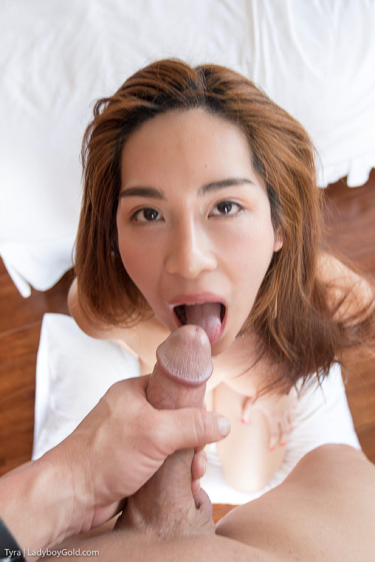 Trans Oriental Louca Para Ser Usada (15)